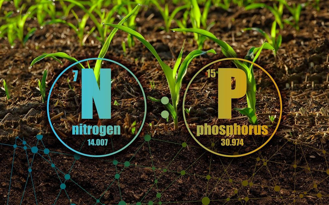 life-science.eu - Foto: (c) © PNNL Creative Service/Universität Wien