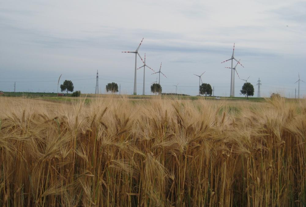 Foto: (c) Zechner, life-science, Ressourcenmanagement und Nachhaltigkeit